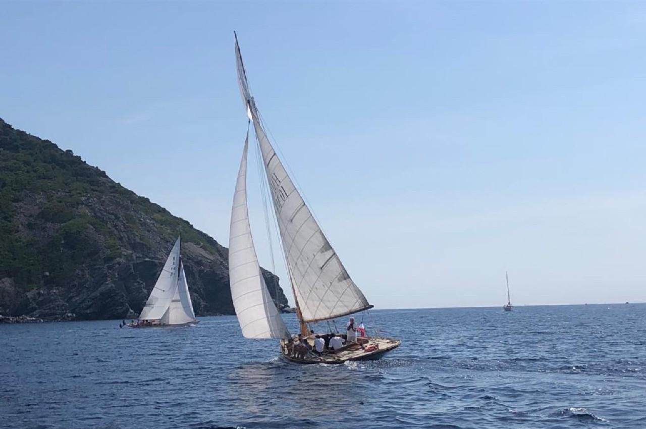 L'Odyssée des Mourvèdres