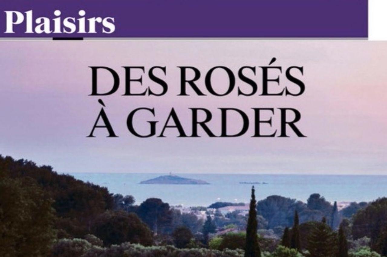 L'Irréductible 2015 sélectionné par Benoist Simmat en tant que rosé de garde dans ce bel article paru dans le JDD