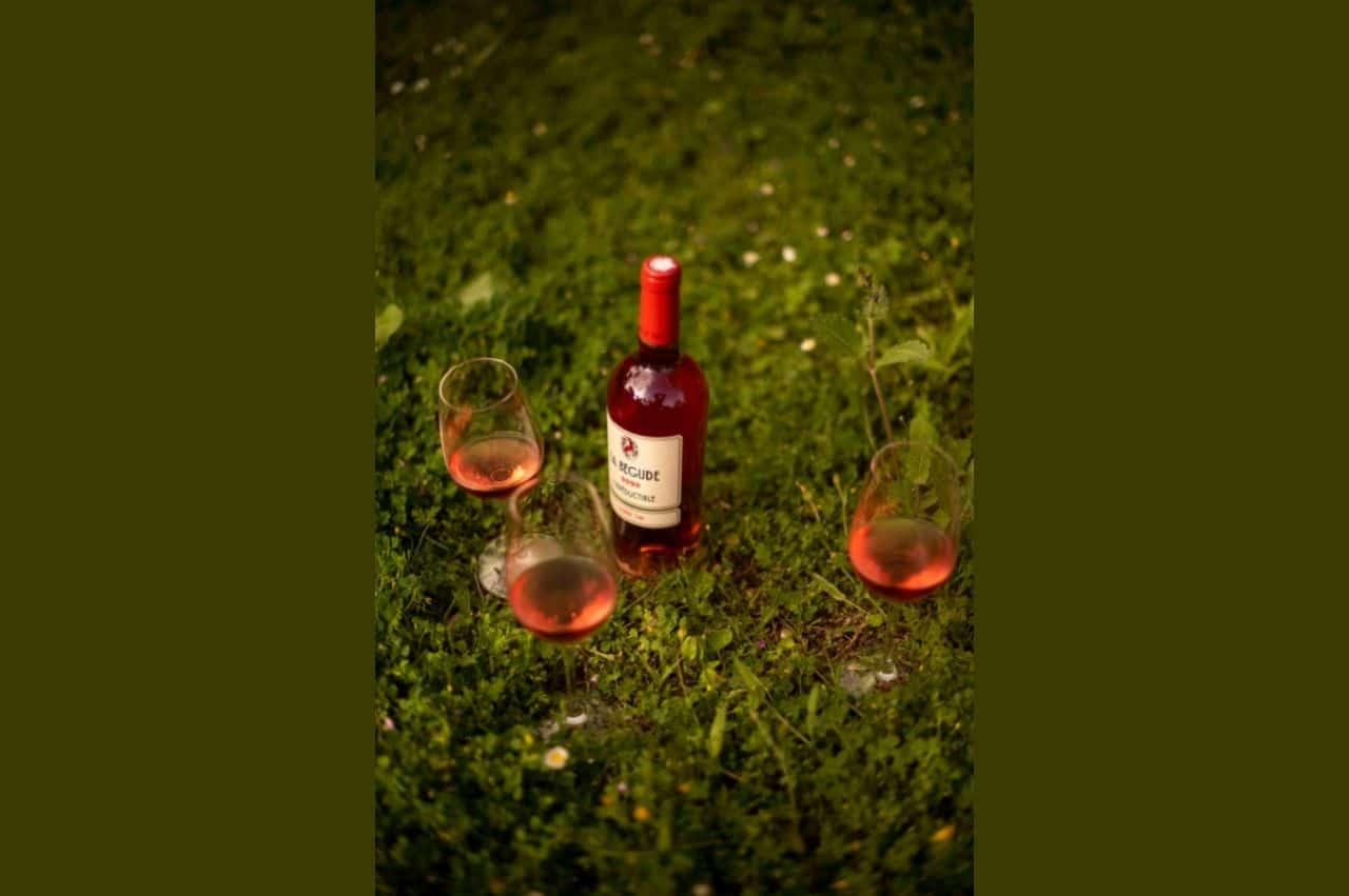 Great wine tasting of our Domaine de la Bégude rosé and la cuvée l'Irréductible 2020 Vinous